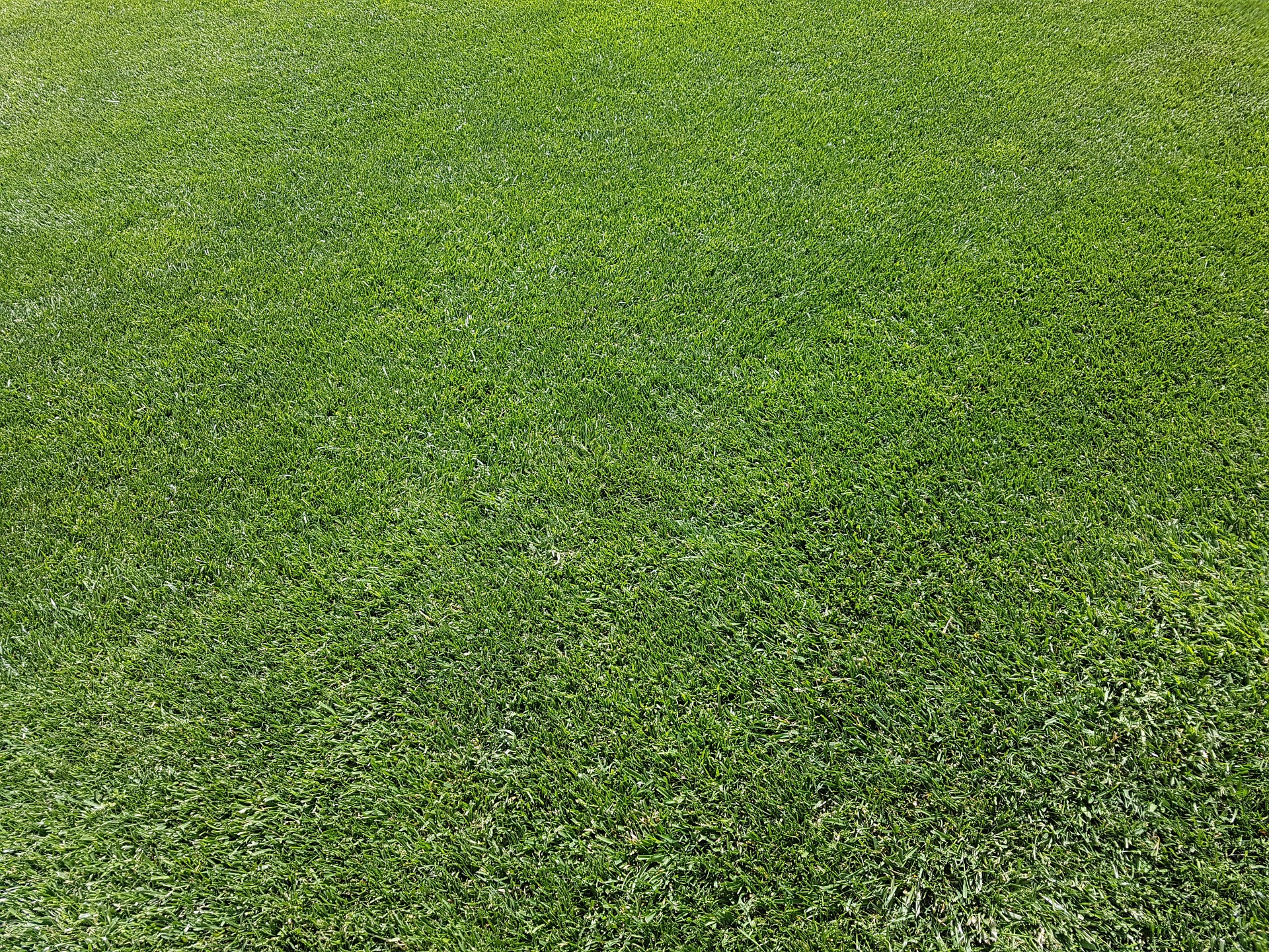 landscaping-company-lawn-care-mechanicsville-southern-maryland